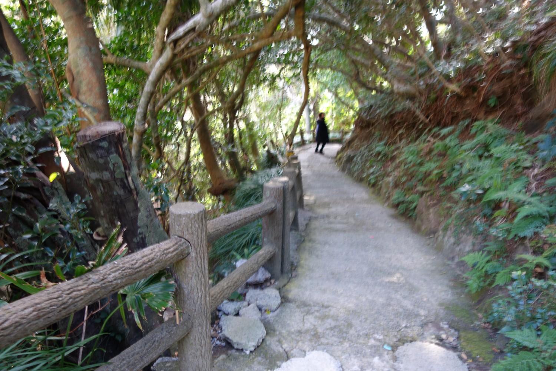佐多岬公園