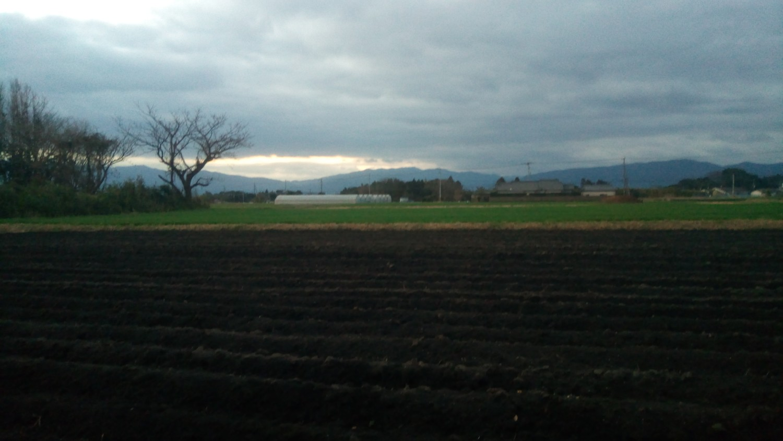 鹿屋の田園風景