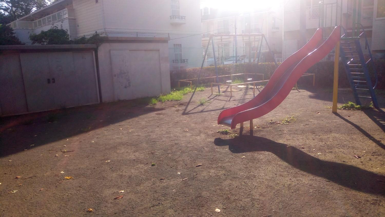 早朝の公園でトレーニング