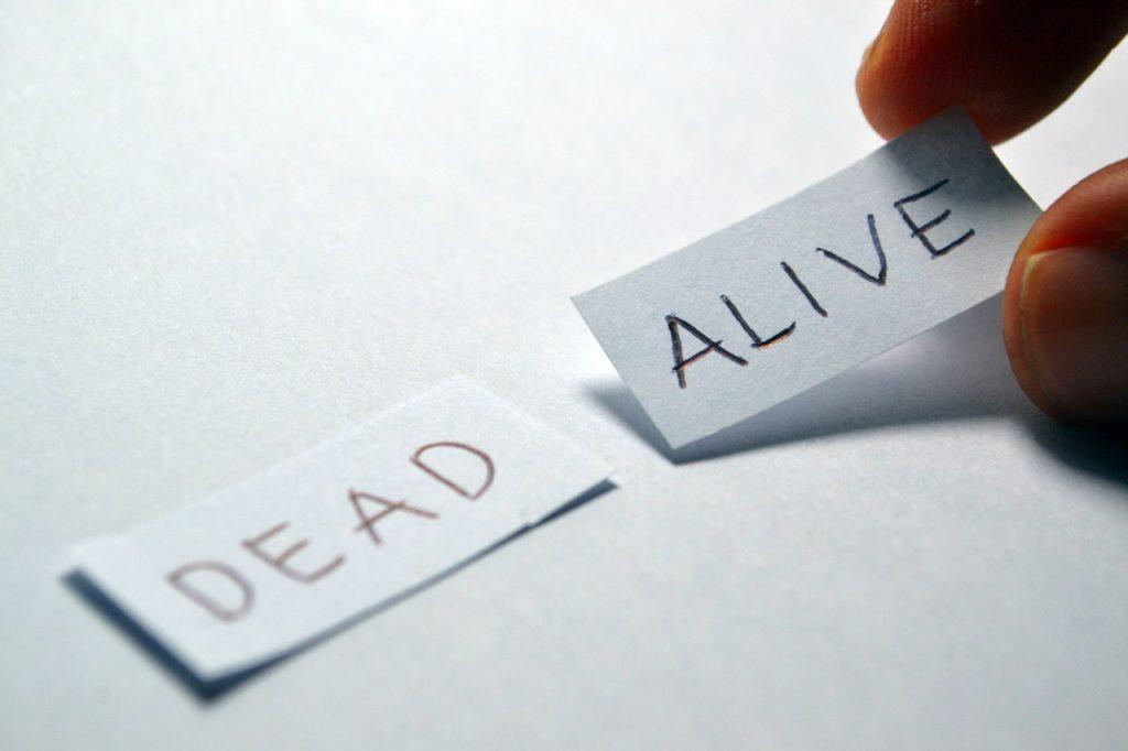 生きるために書くのか、書くために生きるのか。