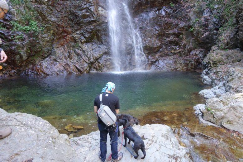 払沢の滝/エメラルドグリーンの滝壺