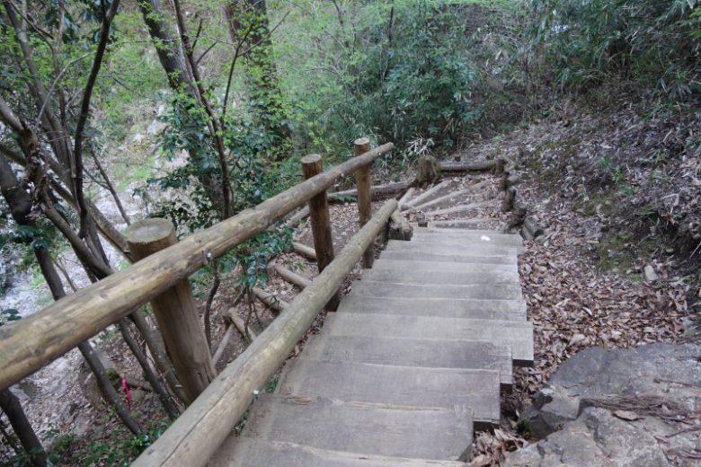 中山の滝/不安定な木もあるので注意