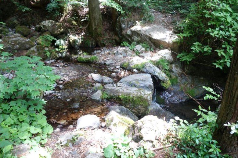 天狗滝・綾滝ルートは川も渡る