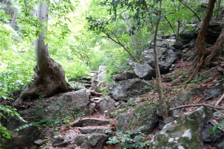 天狗滝・綾滝へ続く登山道
