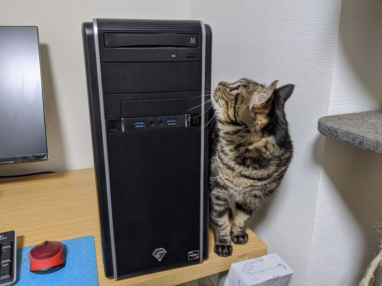 巨大なデスクトップパソコンに興味津々のメイ。